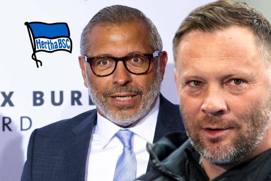 Fall Lehmann: DFB-Botschafter Hartwig und Hertha-Coach Dardai äußern sich