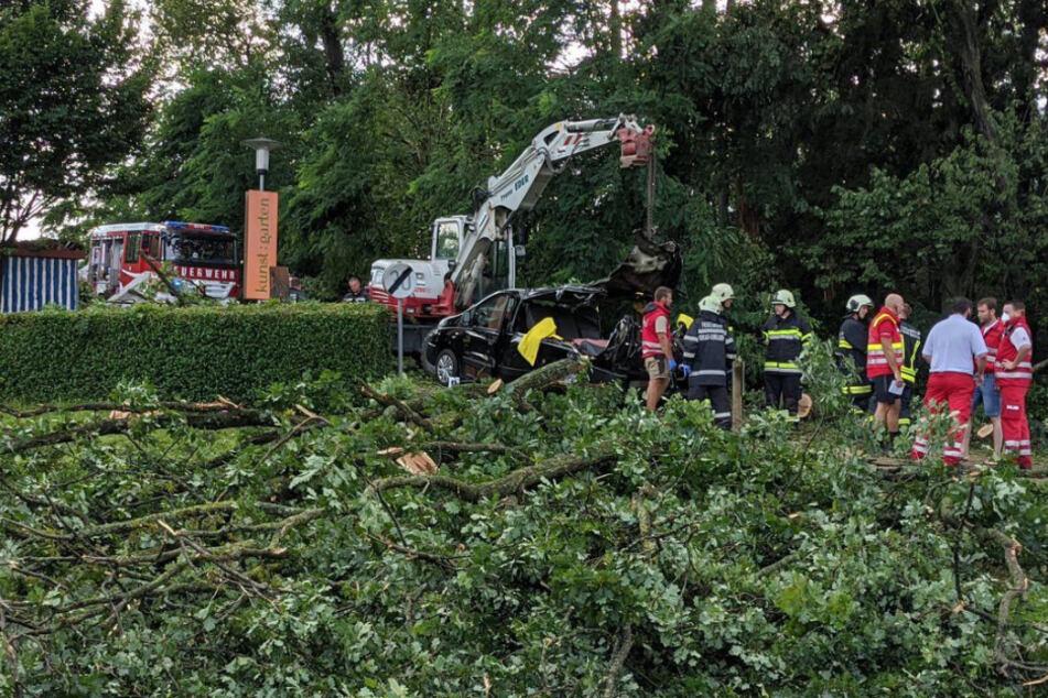 Baum stürzt in Österreich auf Kleinbus - drei Tote