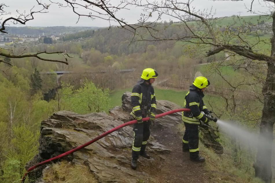 Die Feuerwehr war mit rund 50 Kräften im Einsatz.