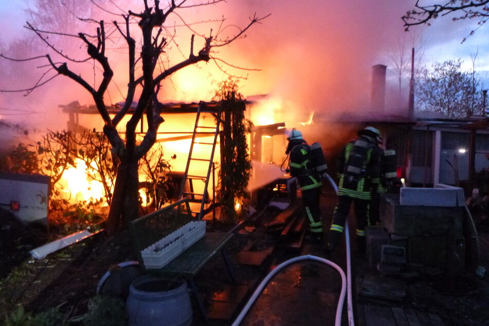 Feuer in Gartenanlage: Fünf Hühner sterben