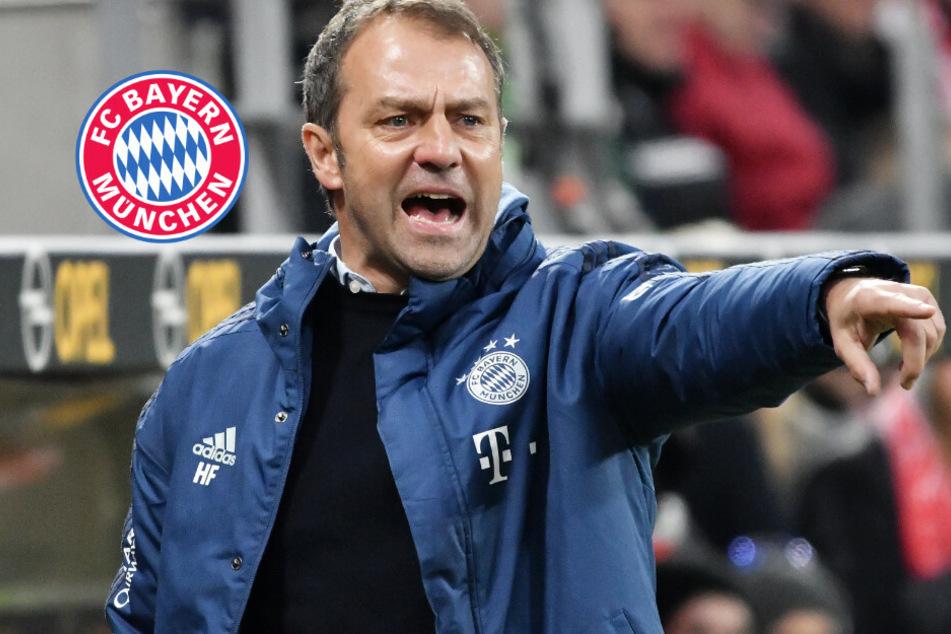 FC Bayern und mögliche Sommer-Neuzugänge? Hansi Flick lässt aufhorchen