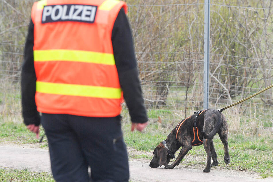 Maulkorb selbst abgenommen? Polizeihund beißt grundlos 15-Jährige!