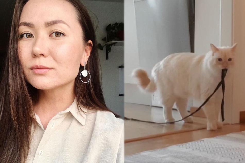 Frau bricht das Herz, als sie auf Video sieht, was ihre Katze alleine macht