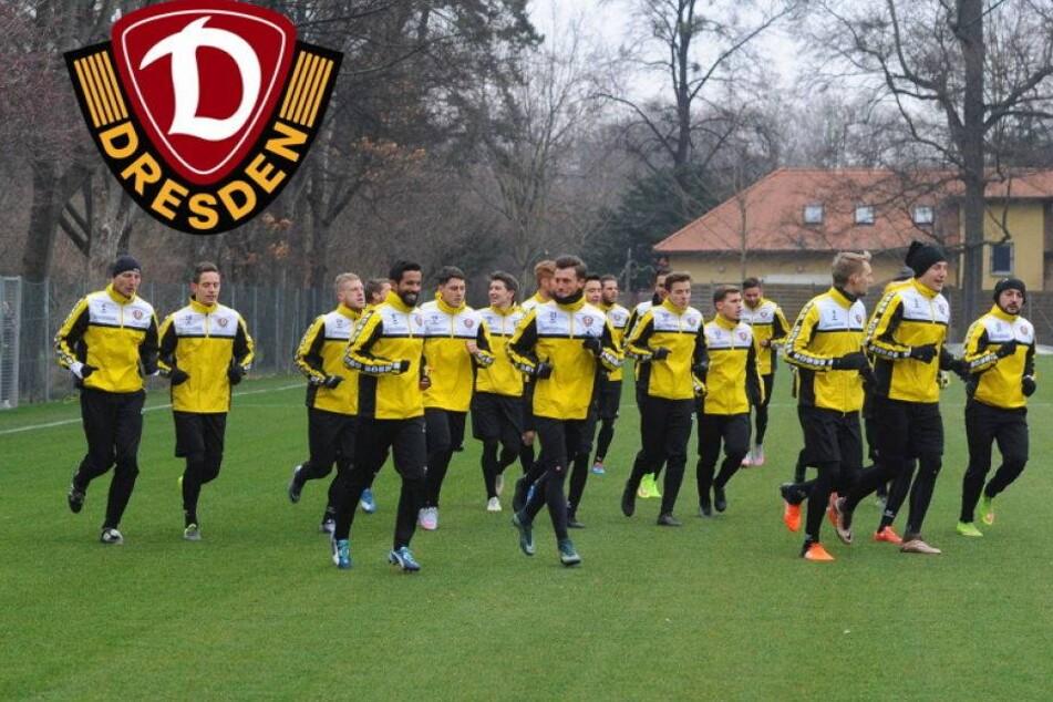 Zwei Stunden Training! Dynamo legt knallhart los