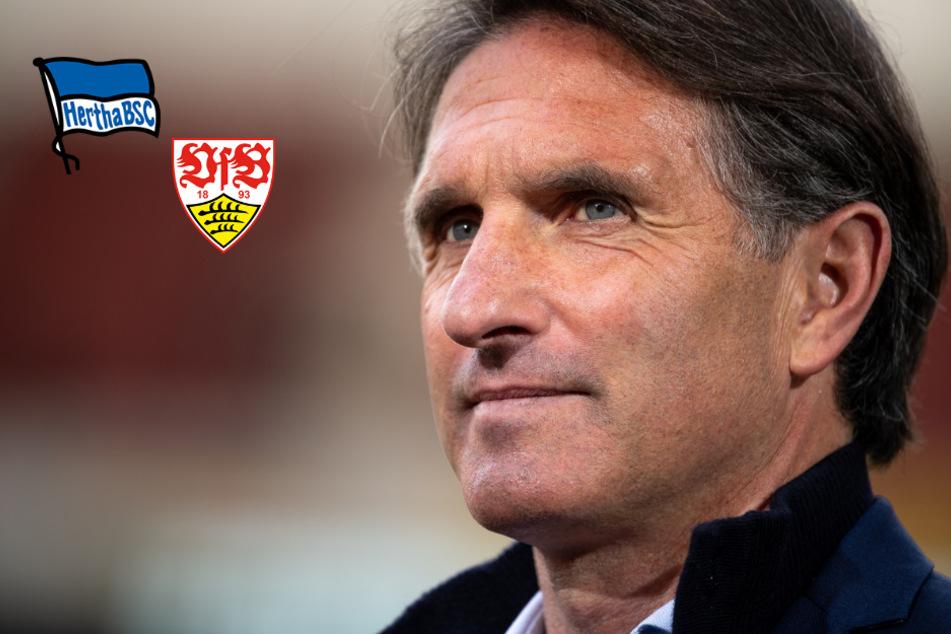 """Ex-VfB-Coach Bruno Labbadia stolz: """"Ich habe sie gerettet!"""""""