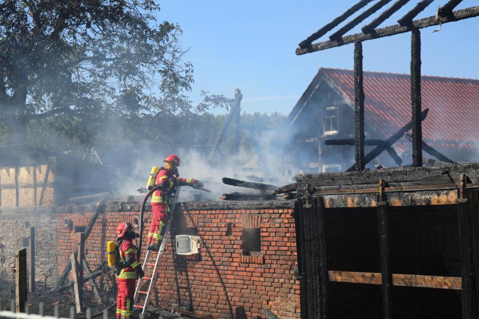 Feuerwehrleute löschen das Feuer.