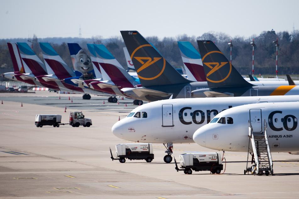 Zahlreiche Flugzeuge von Condor und Eurowings stehen auf dem Vorfeld des Flughafen Düsseldorfs geparkt.