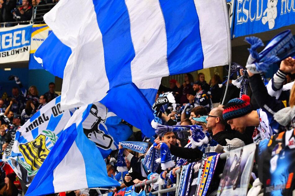 Die Zuschauer-Ränge sind hoffentlich knackevoll. Die Eislöwen wollen die Fans mit dem Einzugs ins Viertelfinale beschenken.