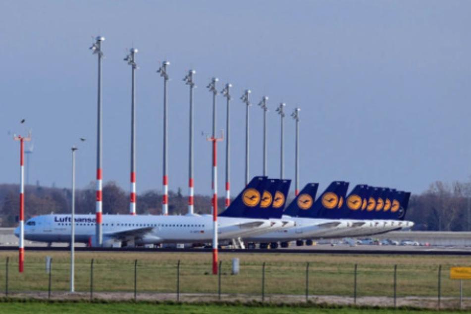 Flugzeuge von Lufthansa stehen am Flughafen in Frankfurt geparkt.
