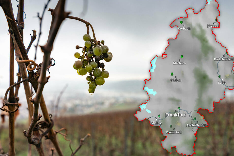 Trüb, aber mild: Die Chance auf eine weiße Weihnacht in Hessen sinkt
