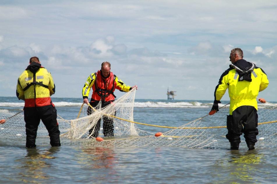 Rettungskräfte suchen mit Netzen auf der Wattenmeerinsel Ameland nach dem vermissten deutschen Mädchen.