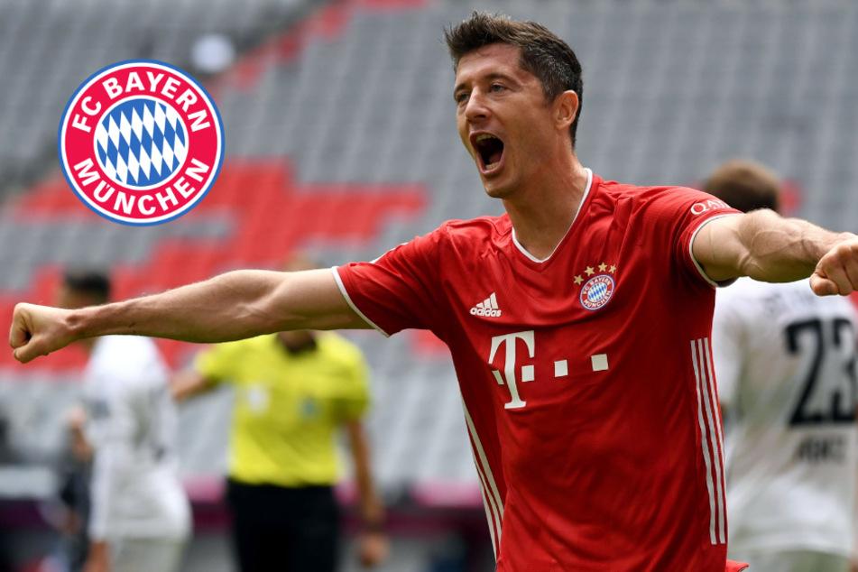 FC Bayern München: Das ist der Fahrplan für die Champions League