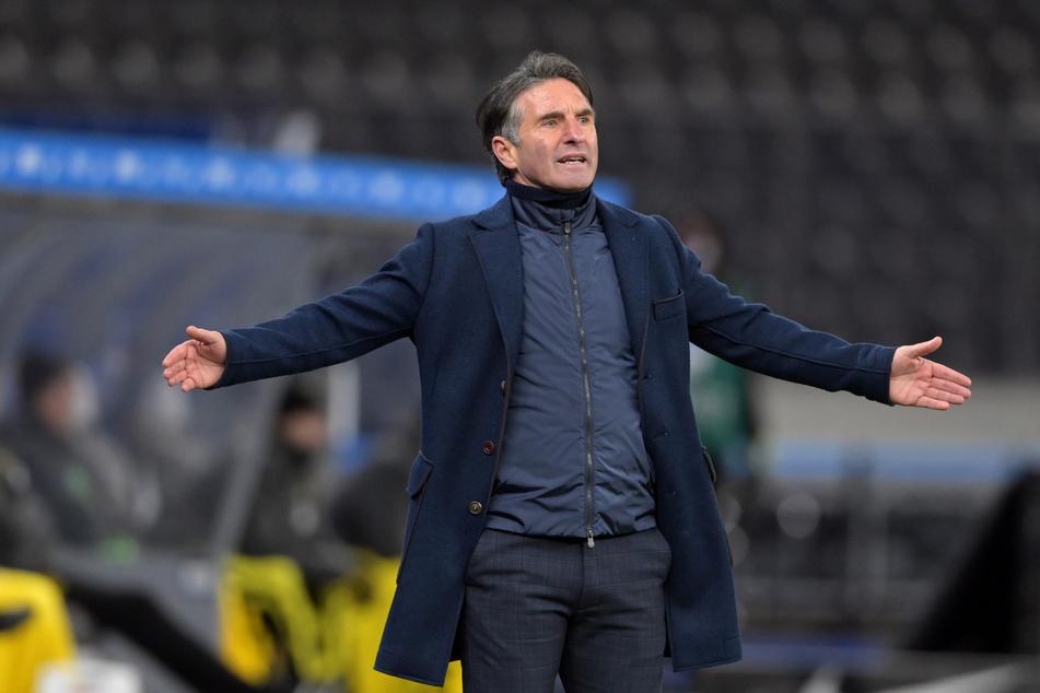 Bruno Labbadia (55) ist immer wieder als Kandidat auf den Trainerposten beim 1. FC Köln im Gespräch. Zustande kam ein Engagement bislang aber nie. (Archivfoto)