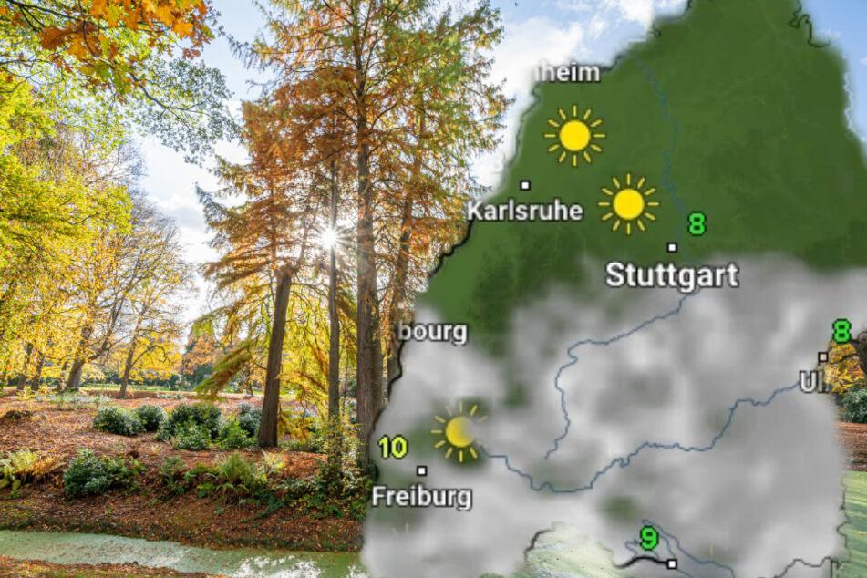 Goldener Herbst? So schön wird das Wetter in dieser Woche