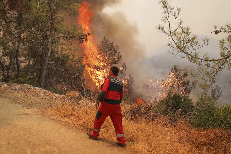 Bei über 40 Grad breiten sich die Waldbrände in der Türkei immer weiter aus.