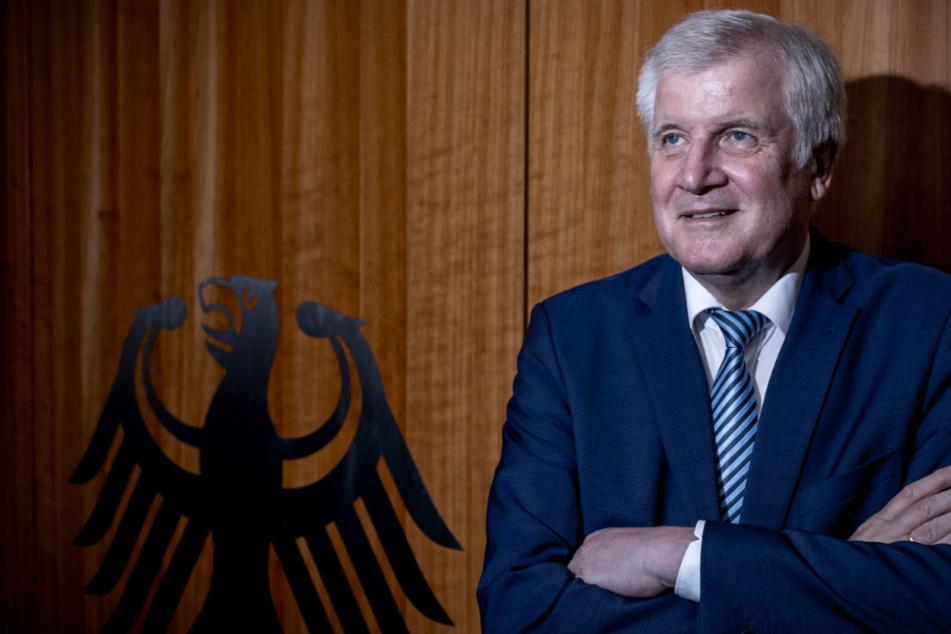 Verfassungsrichter geben AfD-Klage gegen Horst Seehofer statt