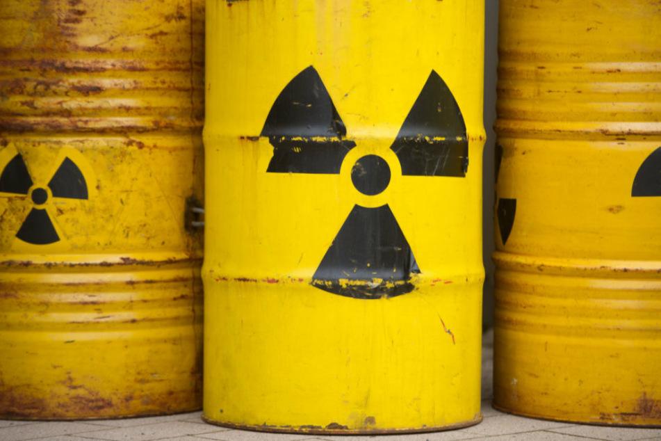 Gelbe Metalltonnen sind mit dem Radioaktiv-Zeichen versehen. Ab 2050 sollen in Deutschland Behälter mit strahlendem Abfall unterirdisch eingelagert werden. Zu diesem Zweck werden Gebiete ausgewiesen, die sich als Atommüll-Endlager eignen, so auch in Brandenburg.