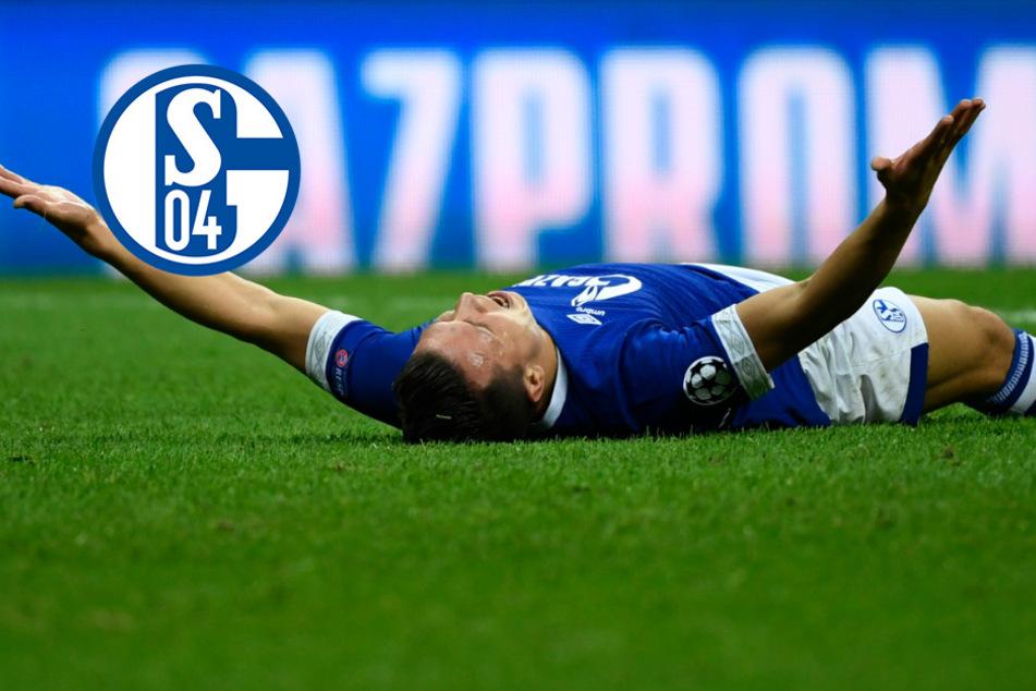 Schalke 04 auch mal mit guten Nachrichten: Gazprom macht die Knappen froh!