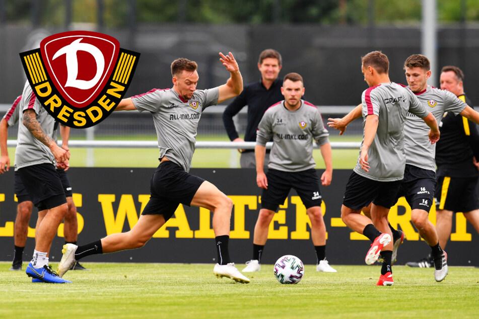"""Dynamo lässt endlich wieder Fans zu: Drei """"offene Trainings"""" geplant!"""
