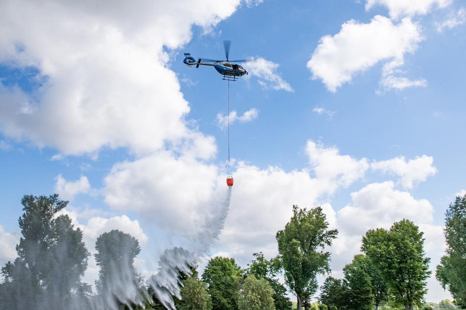 Drei Hubschrauber sollen künftig für die Löschung von Waldbränden bereitstehen.