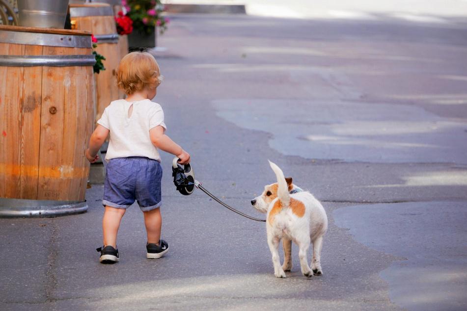 Hunde und Kleinkinder haben doch mehr Ähnlichkeit, als man bisher annahm.