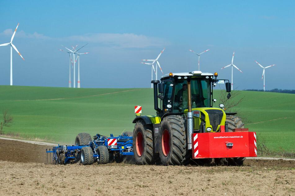 Das Brandenburger Kabinett hat die Neufassung des Landwirtschafts-Staatsvertrages mit dem Land Berlin beschlossen. (Symbolbild)