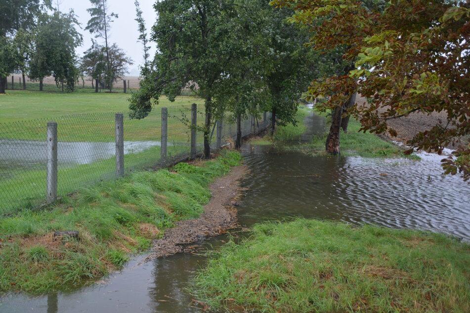 Die Entwässerungsgräben werden nicht regelmäßig gesäubert, weswegen es beispielsweise in Kleinpösna oft zu Überschwemmungen kommt.