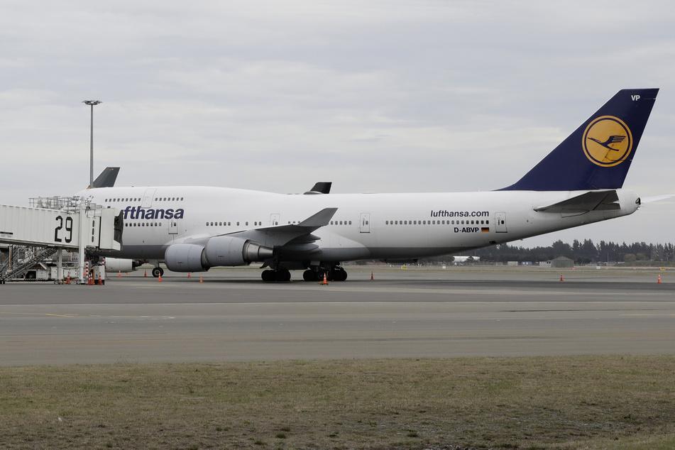 Ein Flugzeug der deutschen Lufthansa steht am Flughafen in Neuseeland. Tausende Urlauber warten auf ihre Rückkehr.