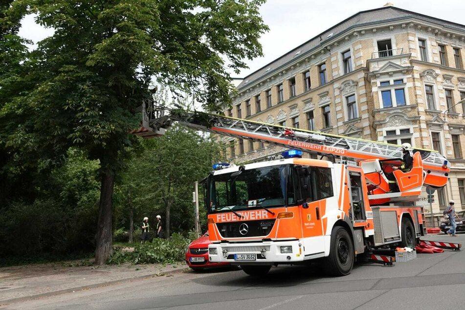 Im Leipziger Osten war bereits ein Ast herabgestürzt, die Feuerwehr ließ kontrolliert weitere Zweige folgen.