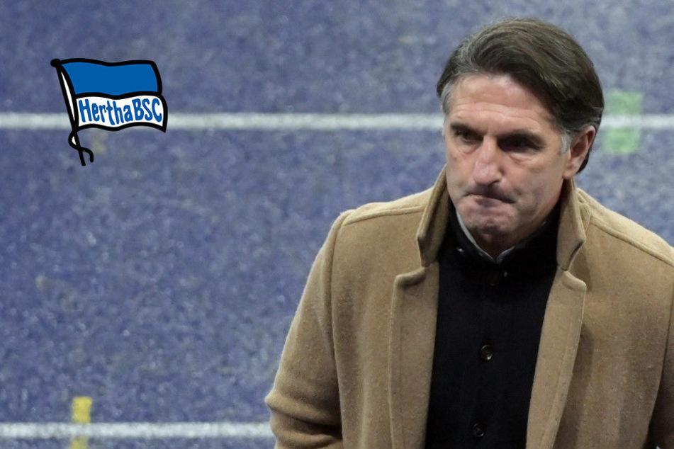 Bruno Labbadia am Scheideweg: Der Hertha-Coach ist zum Siegen verdammt