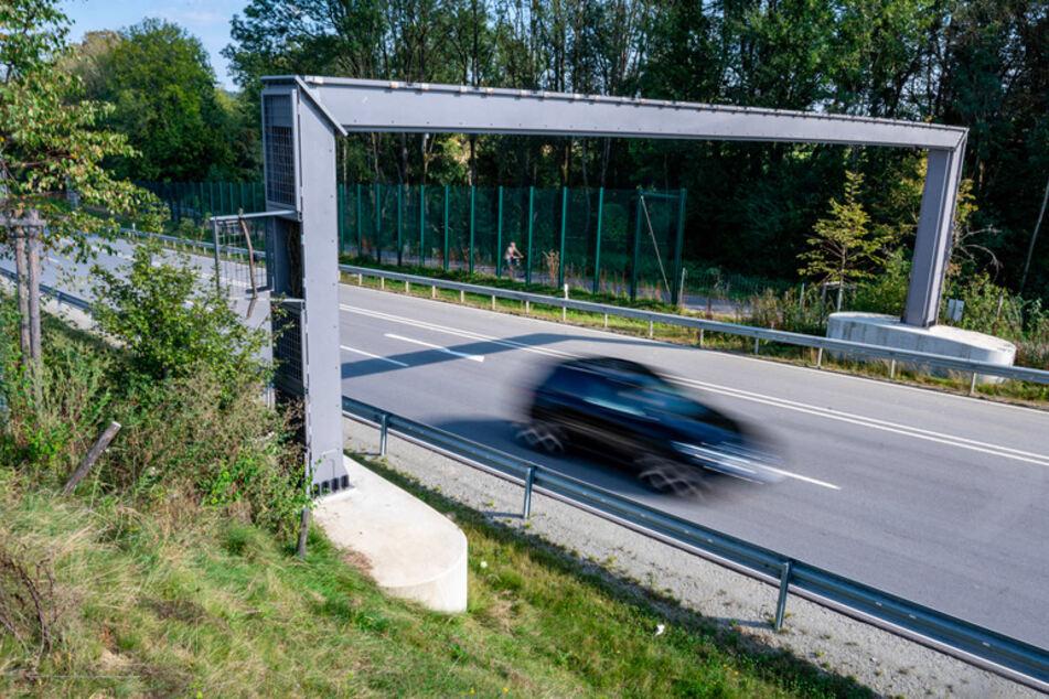 Damit Haselmäuse eine neu gebaute Umgehungsstraße sicher überqueren können, hat ihnen das Staatliche Bauamt im Herbst 2018 eigens eine Brücke für 93.000 Euro errichtet.