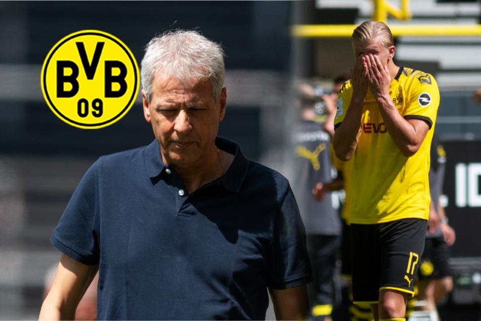"""BVB gegen TSG Hoffenheim mit Offenbarungseid! Bürki: hatten """"keine Lust"""""""