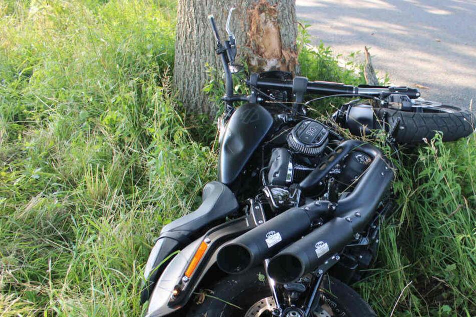 Wurde er abgedrängt? Harley Davidson prallt gegen Baum, Fahrer lebensbedrohlich verletzt