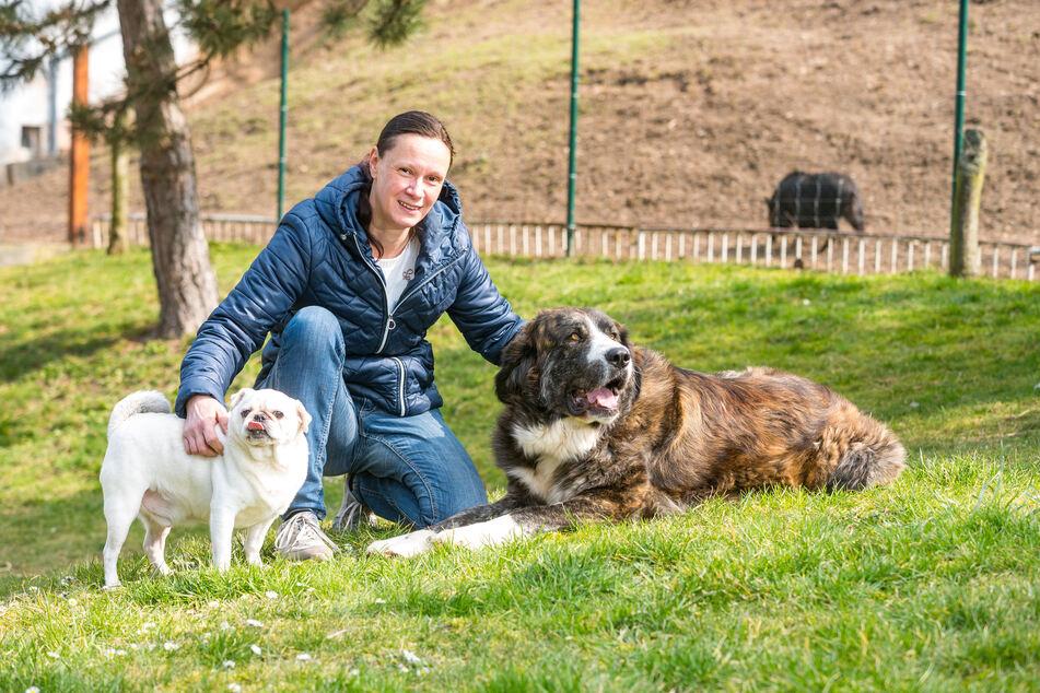Simone Staatz mit Hündin Eria und Mops Rocky. Rocky war in Ungarn Deckrüde in einer sogenannten Vermehrstation. Als er nicht mehr gebraucht wurde, hat man ihn entsorgt wie Abfall.