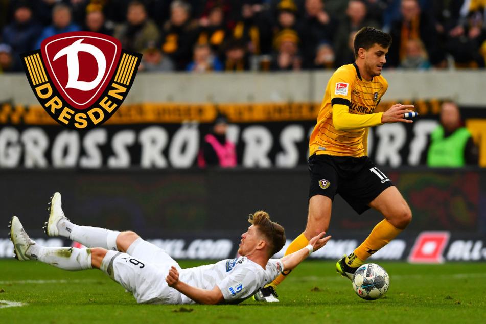 Dynamos verzweifelter Kampf um den Relegationsplatz! Was spricht für, was gegen Schwarz-Gelb?