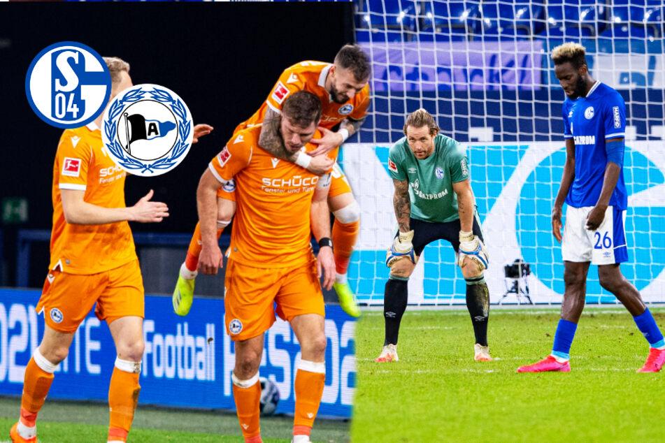Schalke-Trainerwechsel verpufft! S04 verliert gegen Bielefeld und ist seit 29 Liga-Spielen ohne Sieg