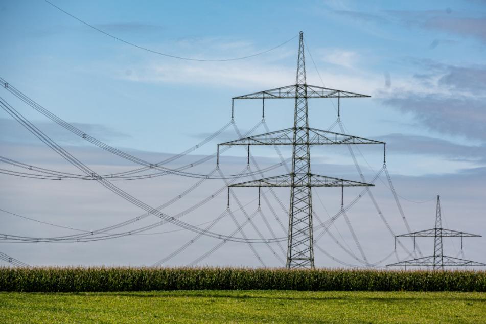 Unter dieser Stromleitung können Spaziergänger leichte Stromschläge bekommen.