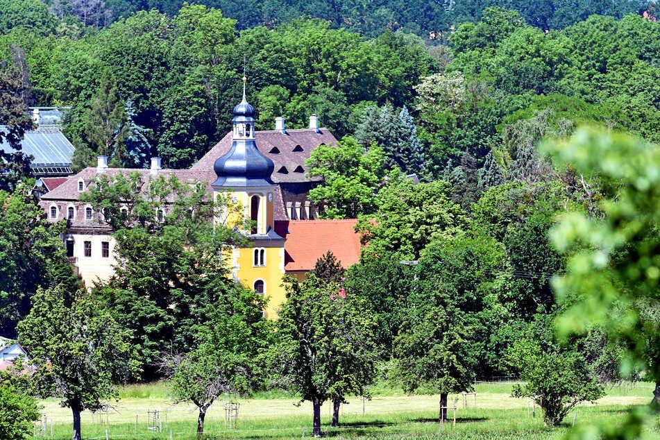 Schloss Zuschendorf ist einen Ausflug wert. Es liegt nur eine halbe Autostunde von Dresden entfernt bei Pirna.