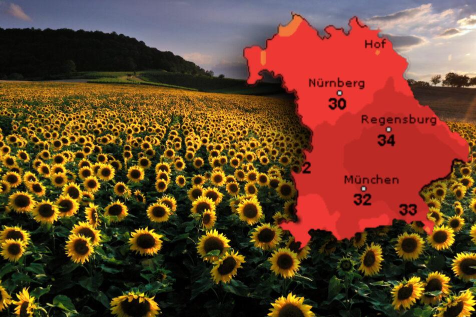 Hochsommerlich heiß: Dieses Wetter bringt Bayern ins Schwitzen