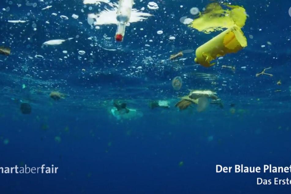 Es ist fünf vor zwölf - die Meere ersticken im Müll.