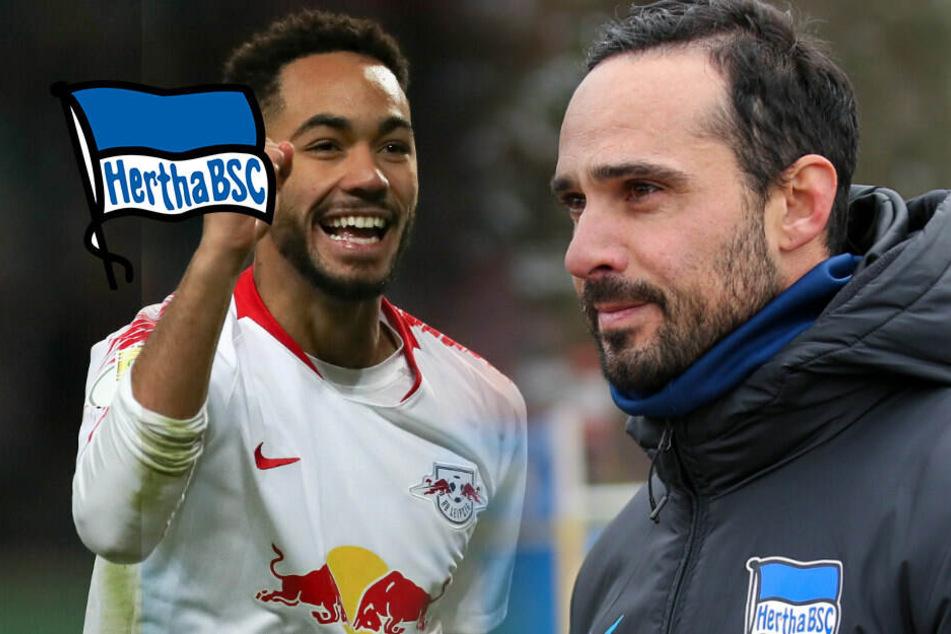 Cunha vor Hertha-Debüt: Reißt Nouris Horror-Serie?