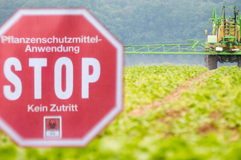 Der Vorstoß geht  dem hessischen Bauernverband zu weit. (Symbolbild)