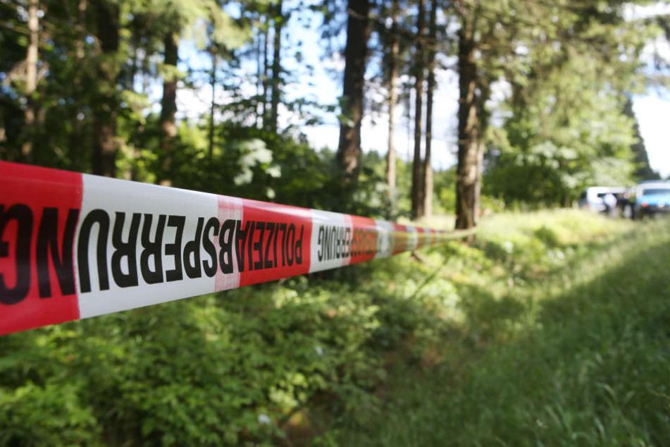 Die Leiche des Mannes wurde in einem Wald gefunden. (Symbolbild)