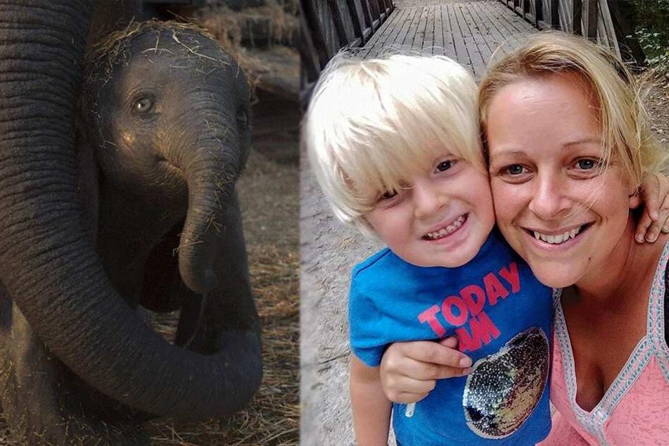 Junge mit Autismus ist überglücklich, Dumbo zu sehen, doch dann wird ihm sein Herz gebrochen