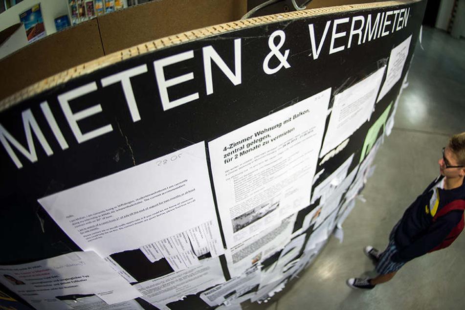 Ein Student Betracht die Wohnungsanzeigen am Schwarzen Brett der Universität.