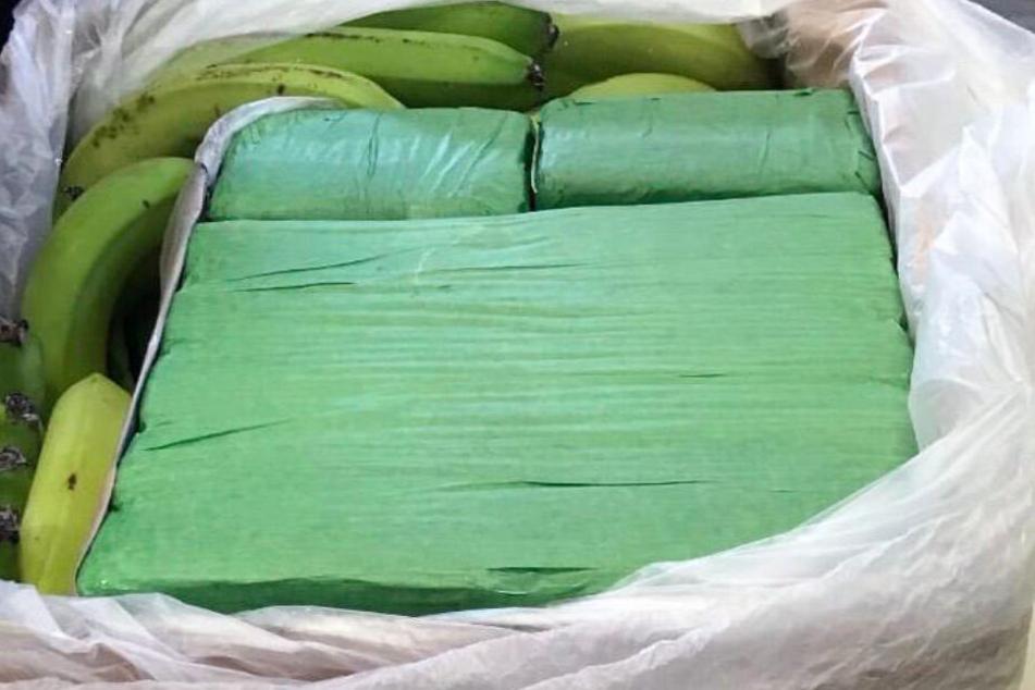 Außen Bananen, innen verpacktes Kokain: Polizei und Zoll haben das Rauschgift sichergestellt.