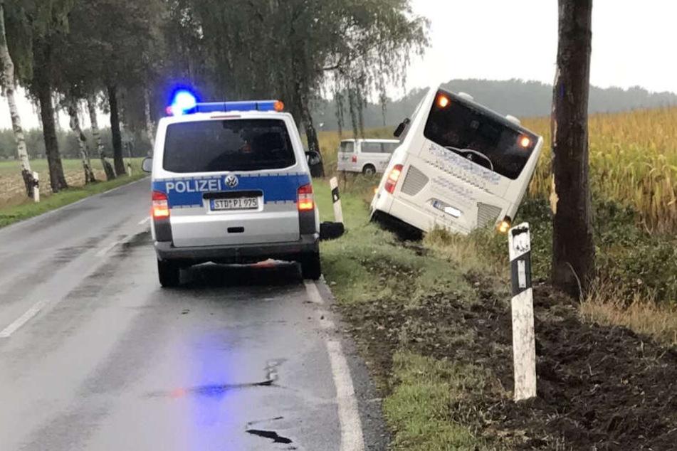 Unfall auf der Landstraße! Reisebus kracht gegen Baum und landet im Graben
