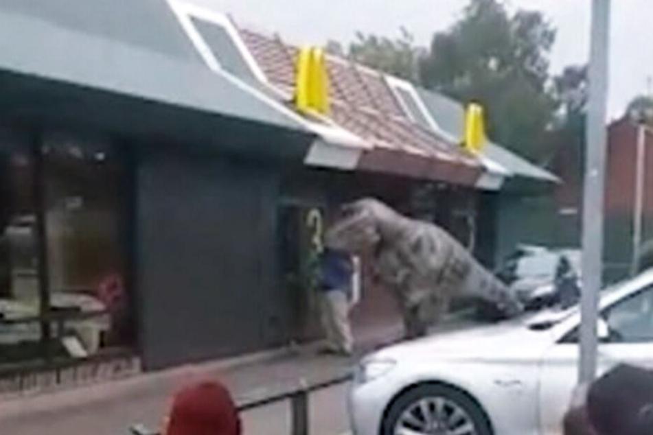 Die Besucher trauten ihren Augen kaum: T-Rex im Drive-in.