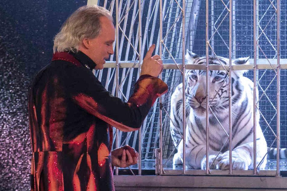 Andre Sarrasani lässt Tänzer im Käfig verschwinden. Simsalabim - und Tiger-Dame Kaya nimmt ihren Platz ein.