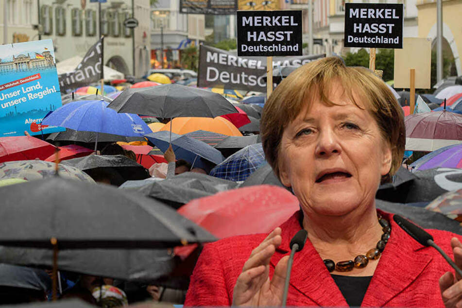 AfD schickt Störer gezielt zu Merkel-Auftritten
